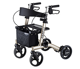 """CONPAL"": Rollator with a Speed Control System"